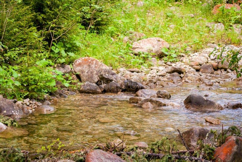 Ένα ρεύμα βουνών Ένας αργός ρέοντας ποταμός μεταξύ των πετρών στοκ φωτογραφία με δικαίωμα ελεύθερης χρήσης