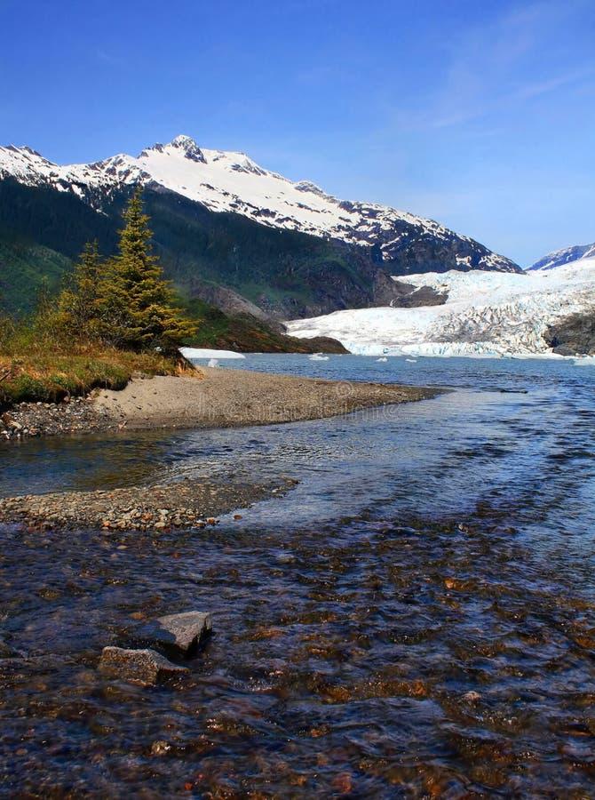 Ένα ρεύμα σολομών στην Αλάσκα στοκ φωτογραφία