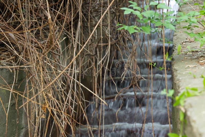 Ένα ρεύμα του νερού, ένας καταρράκτης που διαμορφώνεται σε μια πλημμυρισμένη συγκεκριμένη σκάλα r Εκβολή Kuyalnitsky Οδησσός r στοκ εικόνες με δικαίωμα ελεύθερης χρήσης
