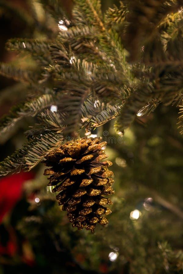 Ένα σπινθήρισμα χρυσό Pinecone στοκ εικόνα με δικαίωμα ελεύθερης χρήσης