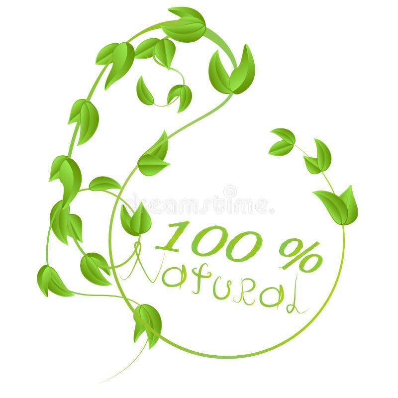 Ένα στρογγυλό πλαίσιο των κλάδων με τα φρέσκα πράσινα φύλλα με την επιγραφή σε φυσικό ελεύθερη απεικόνιση δικαιώματος