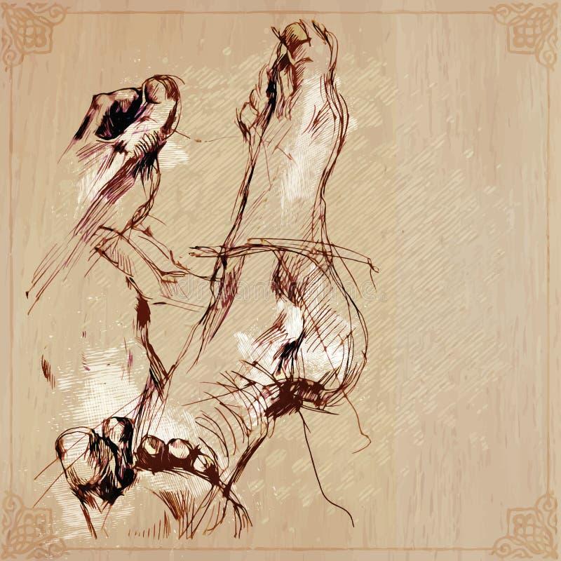 Ένα συρμένο χέρι διάνυσμα - πόδι απεικόνιση αποθεμάτων