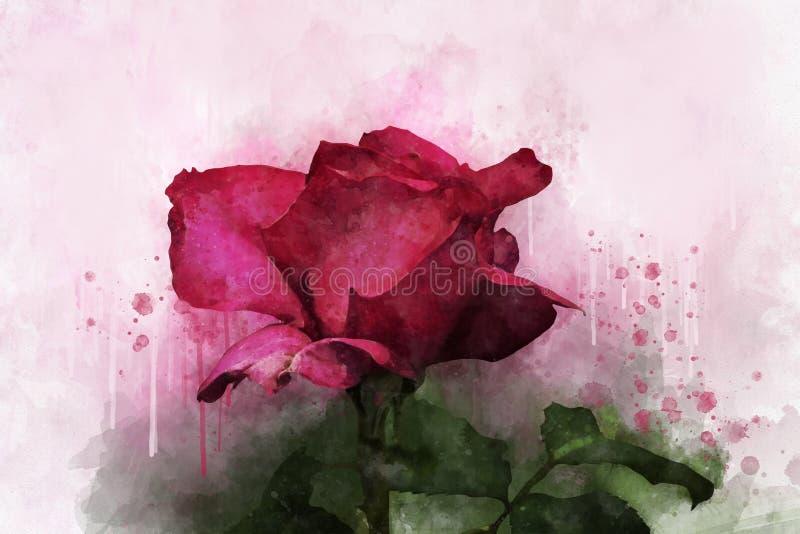 Ένα σχέδιο watercolor δονούμενου ενός ρόδινου αυξήθηκε λουλούδι Βοτανική τέχνη Διακοσμητικό στοιχείο για μια πρόσκληση ευχετήριων ελεύθερη απεικόνιση δικαιώματος