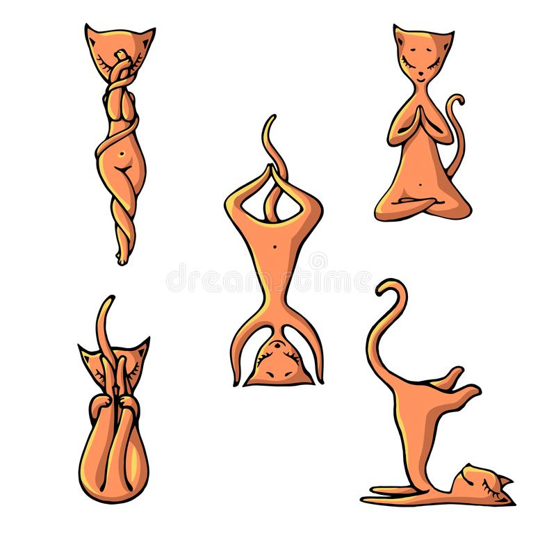 Ένα σύνολο γατών γιόγκας πιπεροριζών στο ύφος της απεικόνισης παιδιών ` s απεικόνιση αποθεμάτων