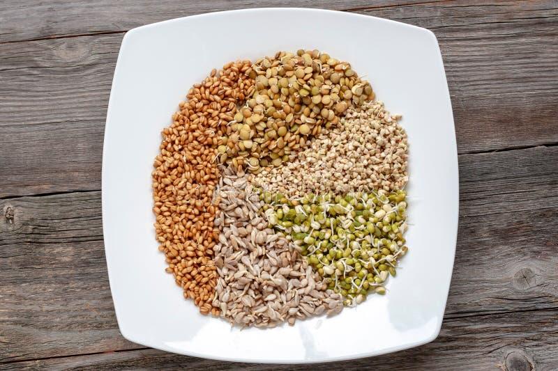 Ένα σύνολο διαφορετικών βλαστημένων σπόρων για την υγιή κατανάλωση σε ένα λευκό στοκ φωτογραφία με δικαίωμα ελεύθερης χρήσης
