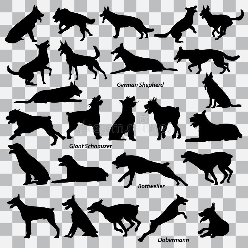 Ένα σύνολο μαύρων σκιαγραφιών των σκυλιών σε ένα διαφανές υπόβαθρο ποντίκια απεικονίσεων κινούμενων σχεδίων που τίθενται διανυσμα απεικόνιση αποθεμάτων