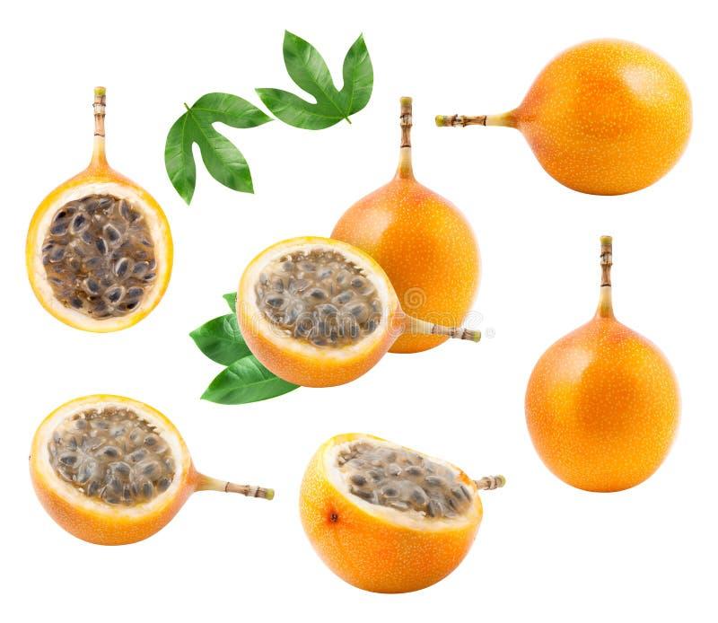 Ένα σύνολο granadilla φρούτων που απομονώνεται στοκ εικόνες