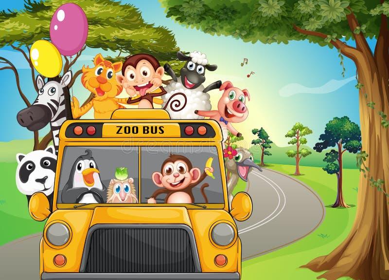 Ένα σύνολο λεωφορείων των ζώων ζωολογικών κήπων ελεύθερη απεικόνιση δικαιώματος