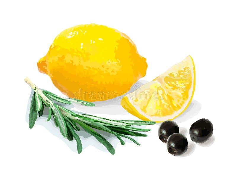 Ένα σύνολο υγιών τροφίμων επίσης corel σύρετε το διάνυσμα απεικόνισης 1 ζωή ακόμα ελεύθερη απεικόνιση δικαιώματος