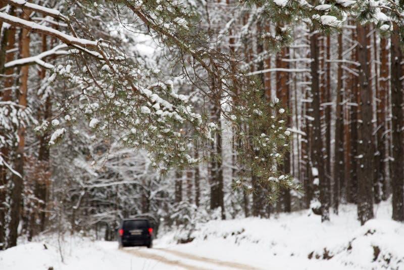 Ένα ταξίδι από το χιονώδη χειμερινό δασικό δρόμο στοκ εικόνες