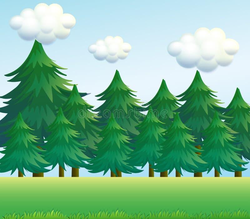 Ένα τοπίο δέντρων πεύκων ελεύθερη απεικόνιση δικαιώματος