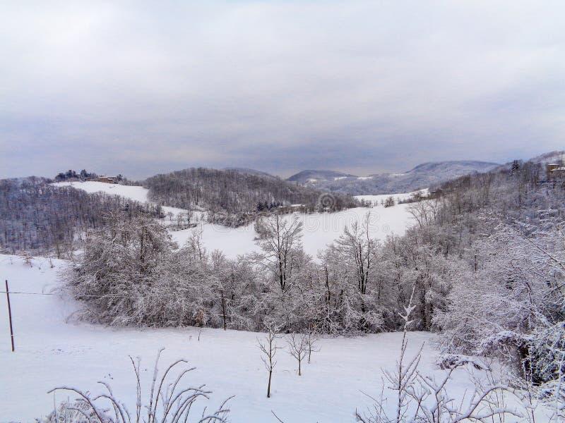 Ένα τοπίο βουνών με το χιόνι και δέντρα στο μέτωπο στοκ εικόνα