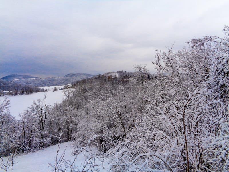 Ένα τοπίο βουνών με το χιόνι και δέντρα στο μέτωπο στοκ φωτογραφία