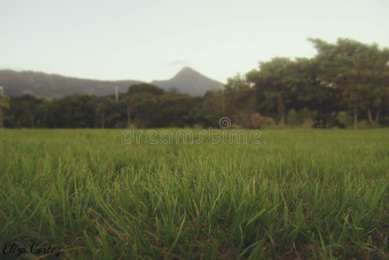 Ένα τοπίο βουνών στοκ εικόνα
