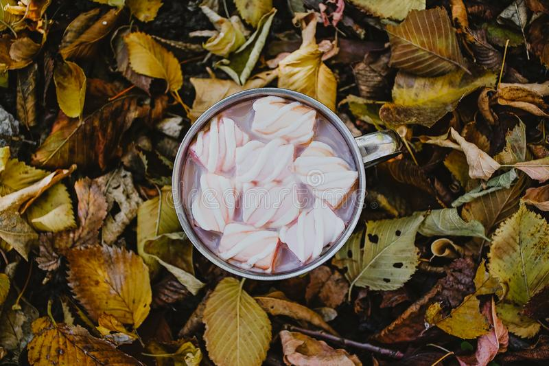 Ένα φλιτζάνι του καφέ με marshmallows σε ένα υπόβαθρο των κίτρινων φύλλων στοκ φωτογραφία με δικαίωμα ελεύθερης χρήσης