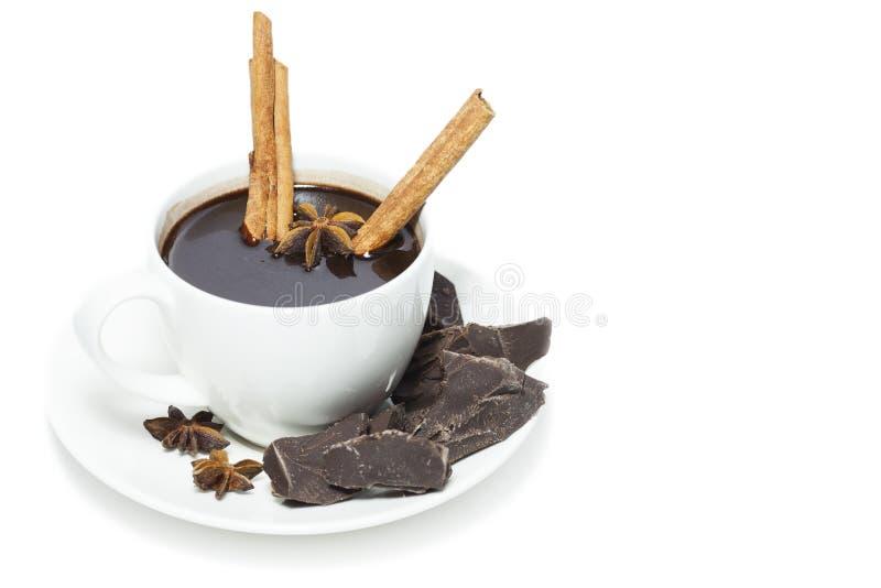 Ένα φλυτζάνι της καυτής σοκολάτας στοκ εικόνες με δικαίωμα ελεύθερης χρήσης