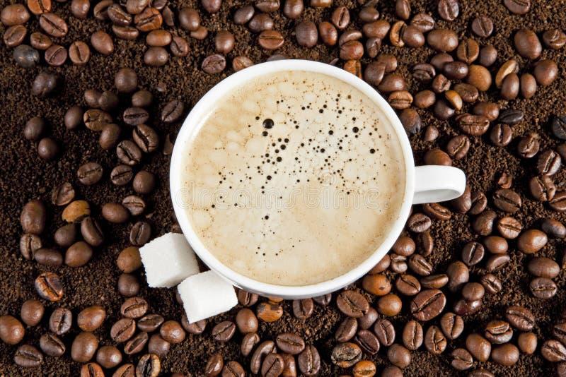 Ένα φλυτζάνι του ισχυρού frothy καφέ espresso στοκ εικόνες