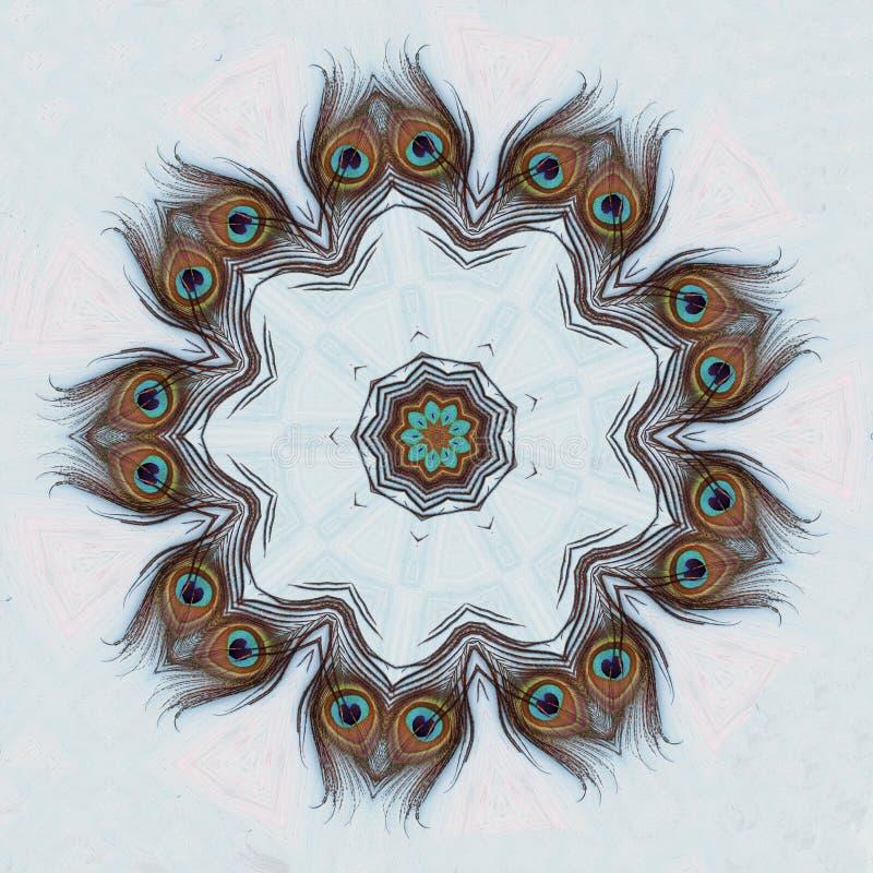 Ένα φτερό peacock στοκ φωτογραφίες με δικαίωμα ελεύθερης χρήσης