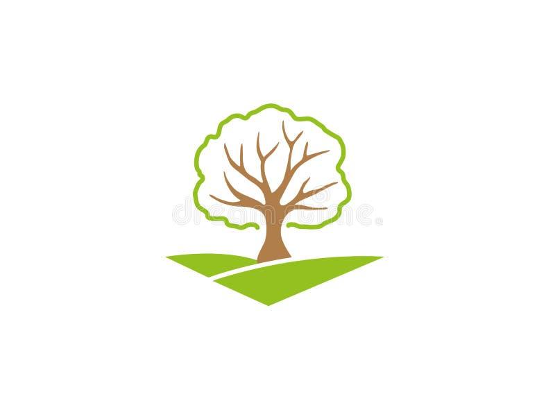 Ένα φυλλώδες δέντρο κλαδίσκους στους πράσινους οροπέδιων για το σχέδιο λογότυπων απεικόνιση αποθεμάτων