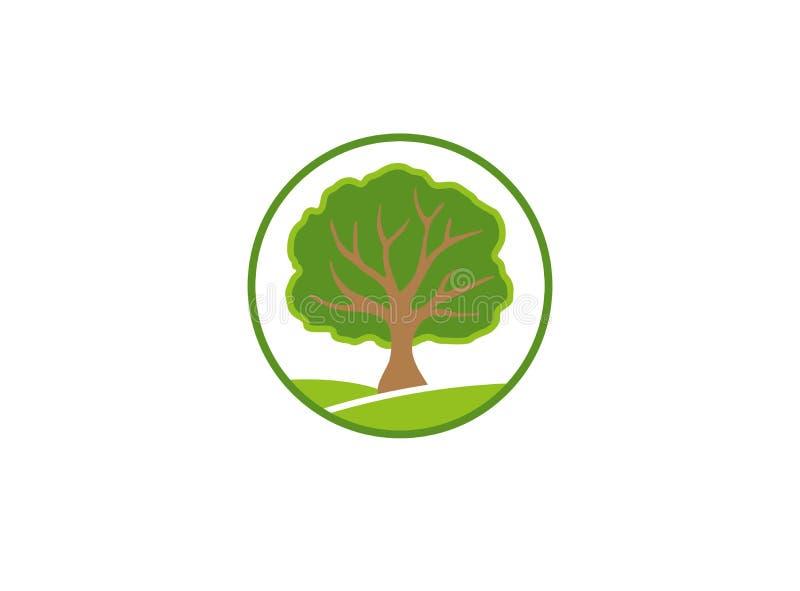 Ένα φυλλώδες δέντρο σε ένα πράσινο οροπέδιο, λογότυπο κλαδίσκων ελεύθερη απεικόνιση δικαιώματος