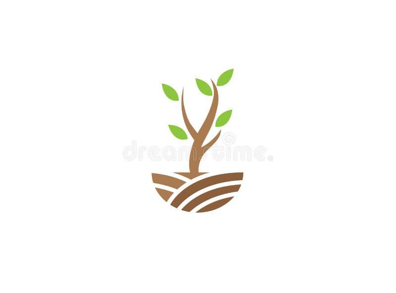 Ένα φυλλώδες μικρό δέντρο κλαδίσκους στους πράσινους οροπέδιων για την απεικόνιση σχεδίου λογότυπων ελεύθερη απεικόνιση δικαιώματος