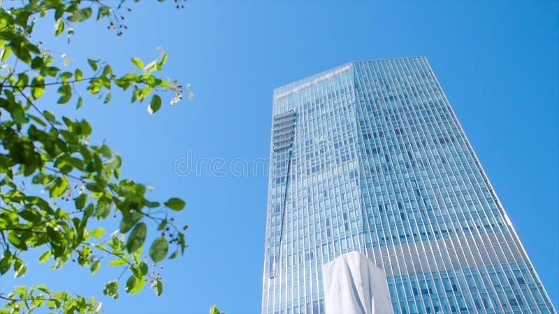 Ένα φύλλο και μια οικοδόμηση απόθεμα Σύγχρονο κτίριο γραφείων μέσω των φύλλων ενός δέντρου έννοια επιχειρήσεων και φύσης στοκ φωτογραφία με δικαίωμα ελεύθερης χρήσης