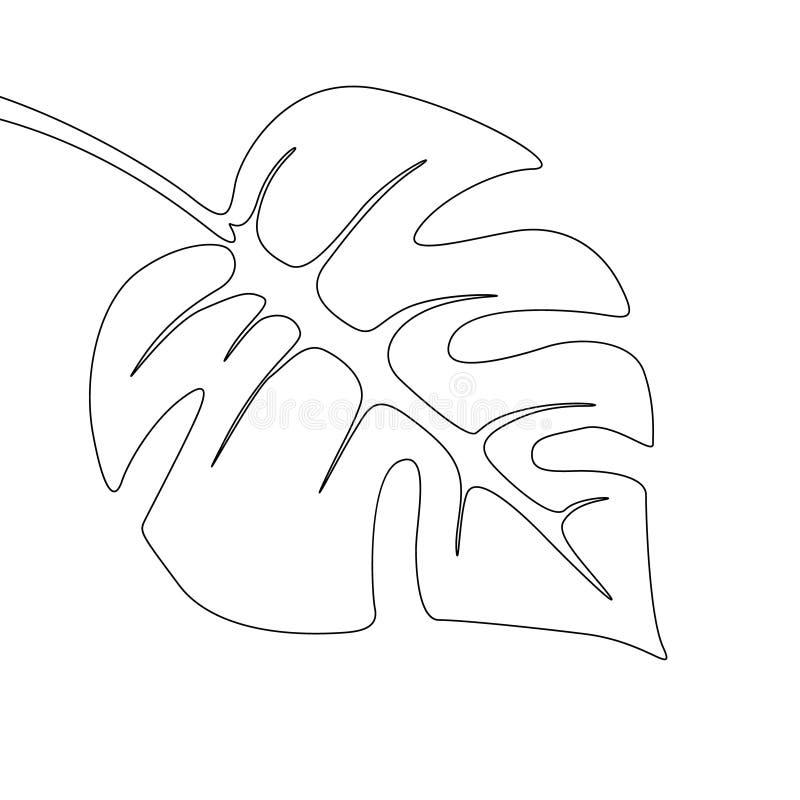 Ένα φύλλο monstera σχεδίων γραμμών Συνεχείς εξωτικές τροπικές εγκαταστάσεις γραμμών ελεύθερη απεικόνιση δικαιώματος