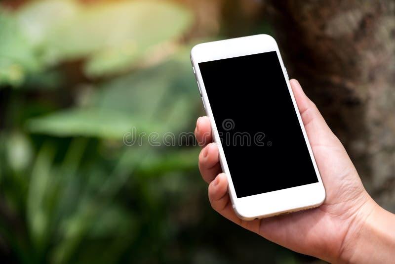 Ένα χέρι που κρατά το άσπρο έξυπνο τηλέφωνο με την κενή μαύρη οθόνη υπολογιστών γραφείου σε υπαίθριο με το πράσινο υπόβαθρο φύσης στοκ φωτογραφία
