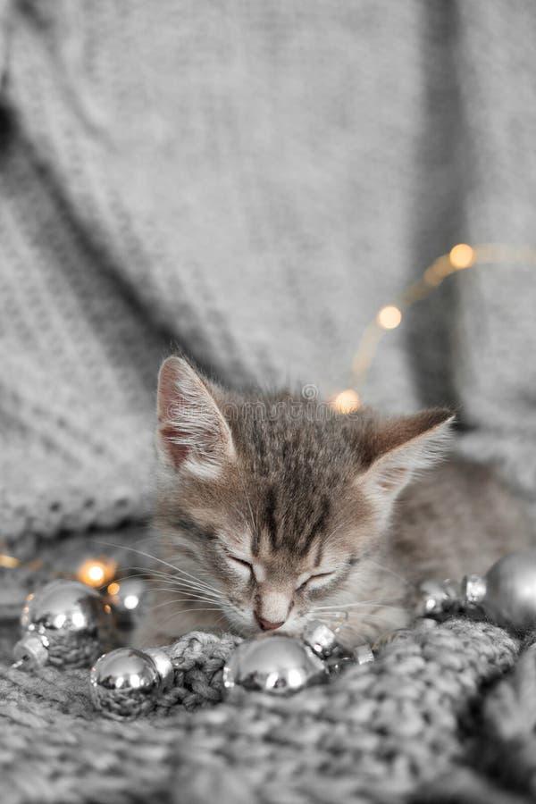 Ένα χαριτωμένο γατάκι στηρίζεται σε ένα γκρίζο καρό στη διακόσμηση Χριστουγέννων στοκ φωτογραφίες με δικαίωμα ελεύθερης χρήσης