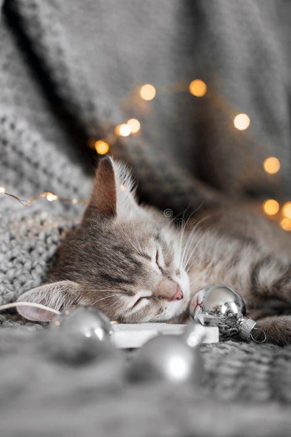 Ένα χαριτωμένο γατάκι στηρίζεται σε ένα γκρίζο καρό στις σφαίρες Χριστουγέννων στοκ φωτογραφίες
