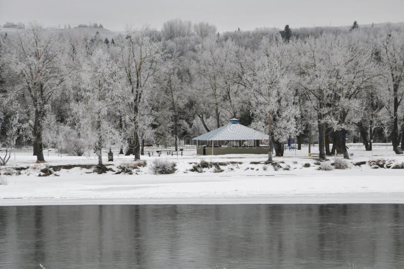 Ένα χειμερινό τοπίο του πάρκου bowness με τον ποταμό τόξων στο πρώτο πλάνο, Κάλγκαρι, Καναδάς στοκ φωτογραφία