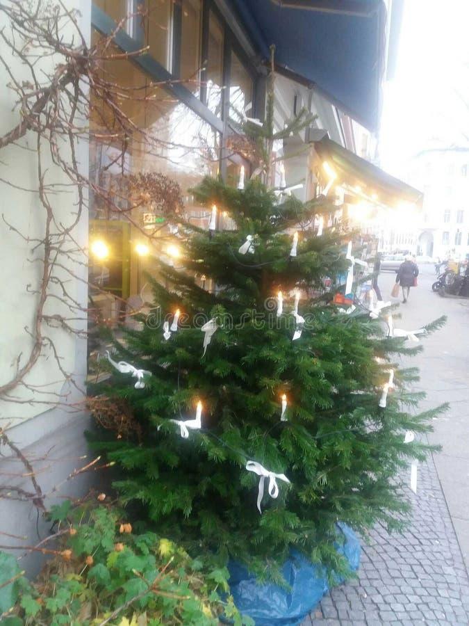 Ένα χριστουγεννιάτικο δέντρο που διακοσμείται με τα φω'τα νεράιδων και τις άσπρες κορδέλλες στοκ εικόνα