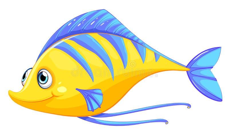 Ένα ψάρι ελεύθερη απεικόνιση δικαιώματος