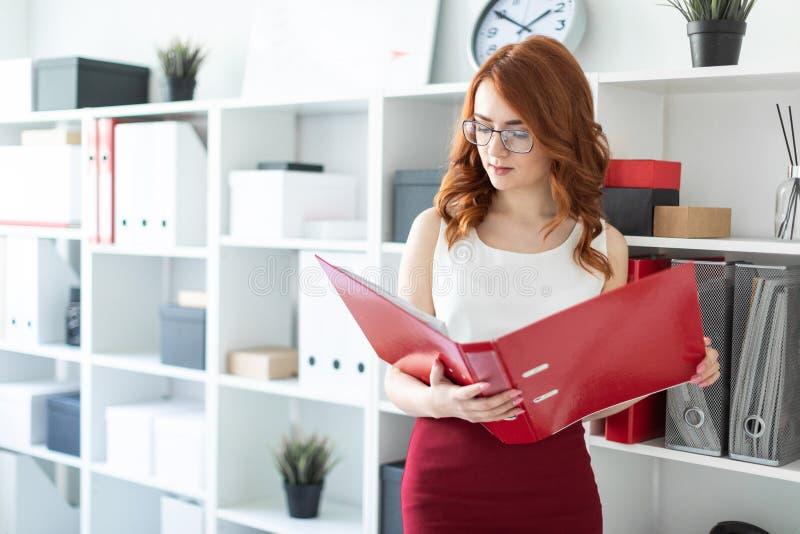 Ένα όμορφο νέο κορίτσι στέκεται κοντά σε έναν σωρό στο γραφείο και κρατά έναν φάκελλο με τα έγγραφα στα χέρια της στοκ φωτογραφίες με δικαίωμα ελεύθερης χρήσης