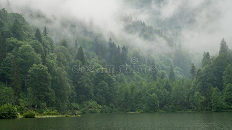 Ένα όμορφο τοπίο λιμνών από το πάρκο φύσης Borcka Karagol, Artvin, Τουρκία στοκ εικόνα με δικαίωμα ελεύθερης χρήσης