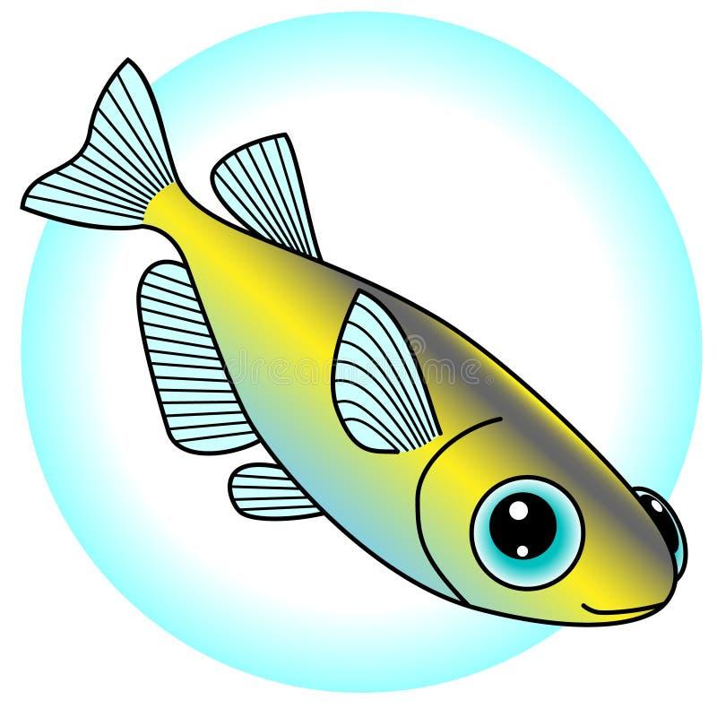 Ένα όμορφο killifish είναι η απεικόνιση που κολυμπούν ελεύθερη απεικόνιση δικαιώματος