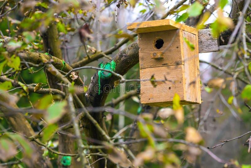 Ένα birdhouse σε ένα δέντρο μηλιάς στον κήπο στοκ εικόνες