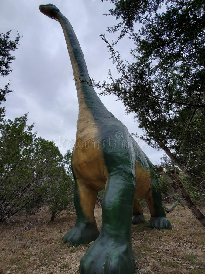 Ένα brachiosaurus στον κόσμο Τέξας δεινοσαύρων! στοκ εικόνες