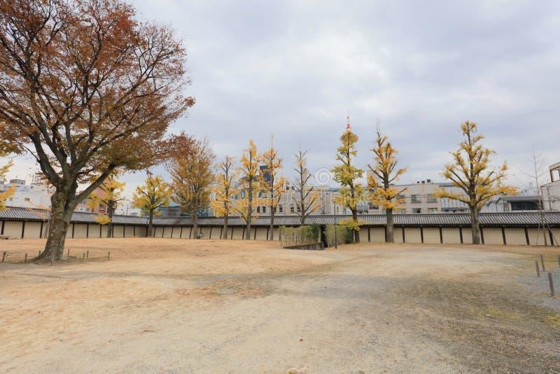 ένα Ginkgo φεύγει στο plaza ναών Higashi Honganji στοκ εικόνες με δικαίωμα ελεύθερης χρήσης