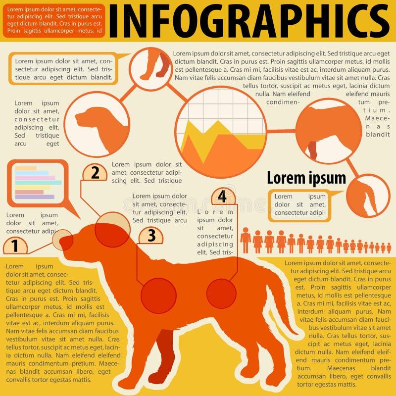 Ένα infographics ενός σκυλιού απεικόνιση αποθεμάτων