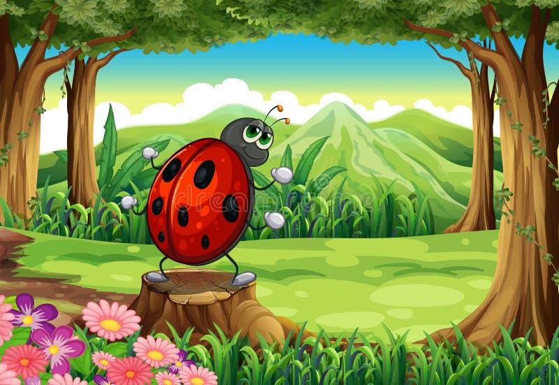 Ένα ladybug στο δάσος που στέκεται επάνω από το κολόβωμα ελεύθερη απεικόνιση δικαιώματος