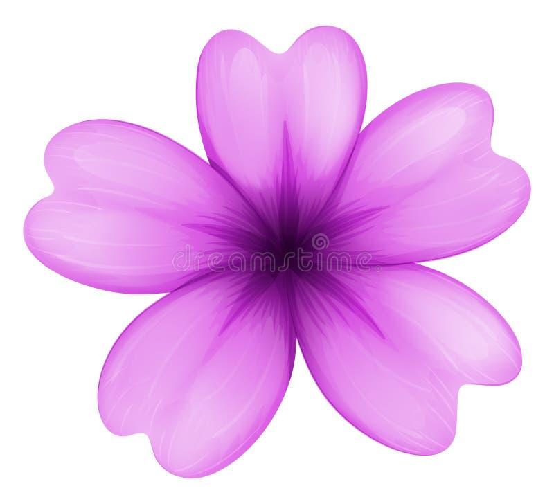 Ένα lavender λουλούδι ελεύθερη απεικόνιση δικαιώματος