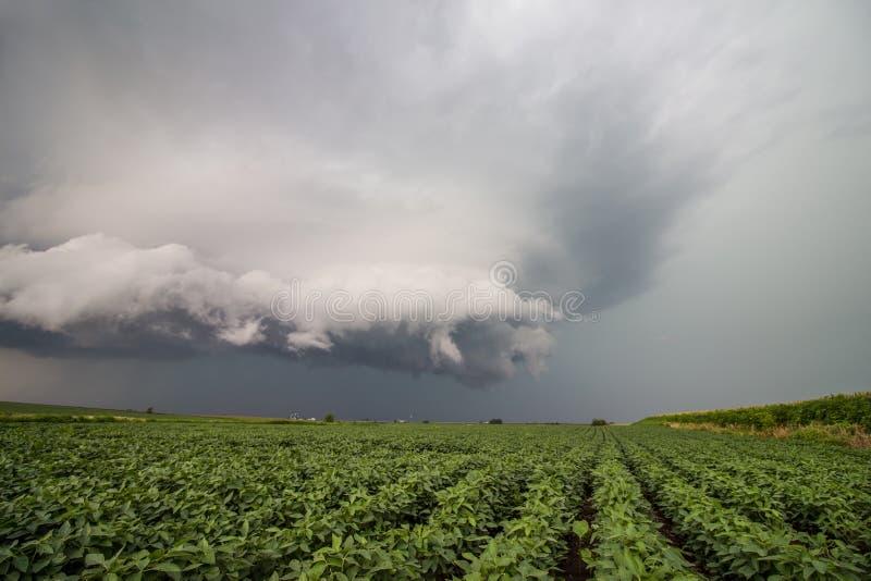 Ένα ragged σύννεφο θύελλας αιωρείται πέρα από τομέας σόγιας στις midwestern Ηνωμένες Πολιτείες στοκ εικόνες