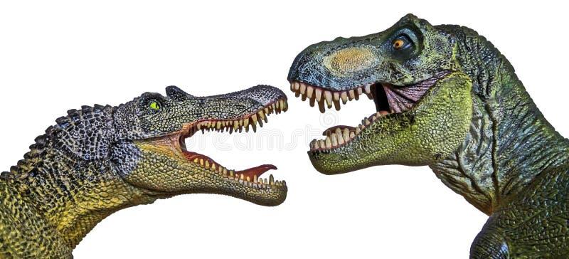 Ένα Spinosaurus αντιμετωπίζει μακριά έναν τυραννόσαυρο Rex στοκ εικόνες με δικαίωμα ελεύθερης χρήσης