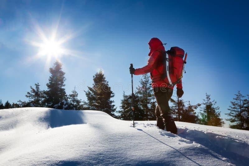 Ένα trekker, που περπατά στο χιόνι, παίρνει ένα υπόλοιπο για θαυμάζει το pano στοκ εικόνες