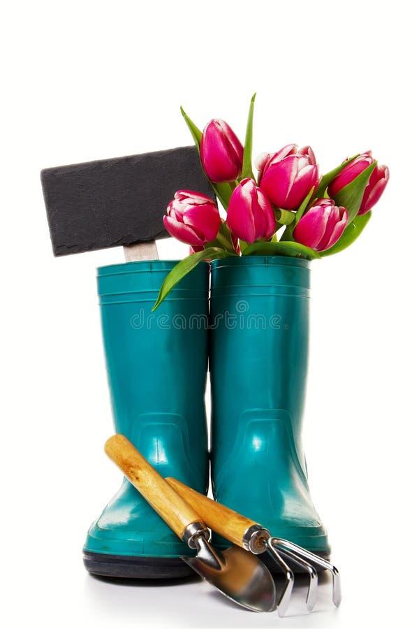 Έννοια άνοιξης ή καλοκαιριού Λαστιχένιες μπότες με τα εργαλεία κηπουρικής στο W στοκ φωτογραφία με δικαίωμα ελεύθερης χρήσης