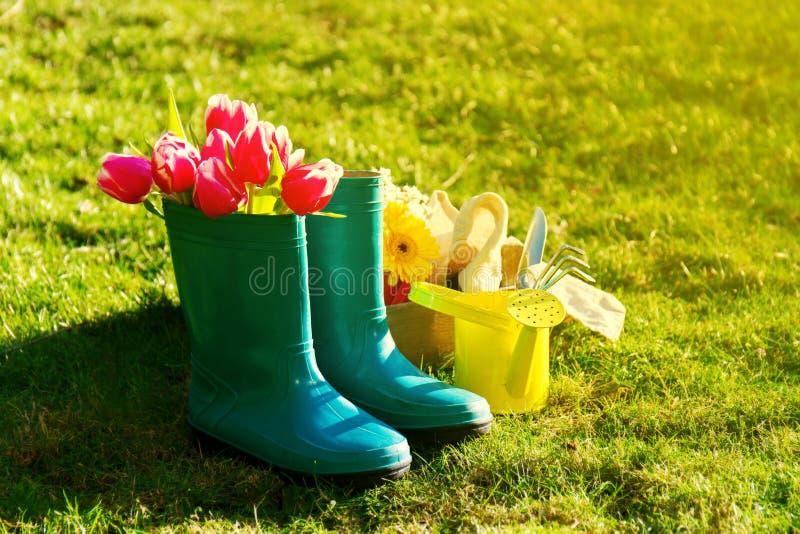 Έννοια άνοιξης ή καλοκαιριού Λαστιχένιες μπότες με τα εργαλεία κηπουρικής στο Γ στοκ εικόνα