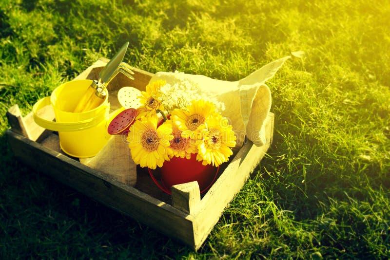 Έννοια άνοιξης ή καλοκαιριού Λουλούδια ανθοδεσμών με τα εργαλεία ο κηπουρικής στοκ εικόνες