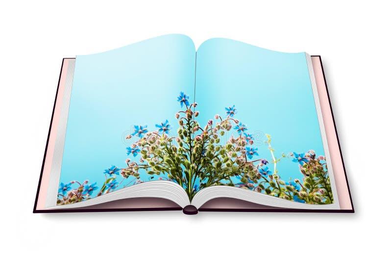 Έννοια άνοιξη - λουλούδια ανοιγμένος photobook στοκ φωτογραφία