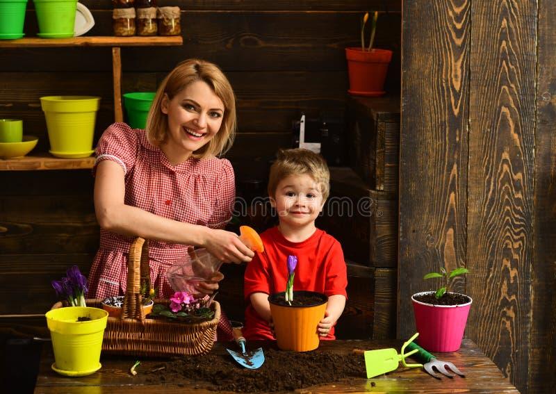 Έννοια άρδευσης Ευτυχές λουλούδι άνοιξη οικογενειακού ψεκασμού με το νερό για την άρδευση Άρδευση houseplant Αποξήρανση και στοκ εικόνα